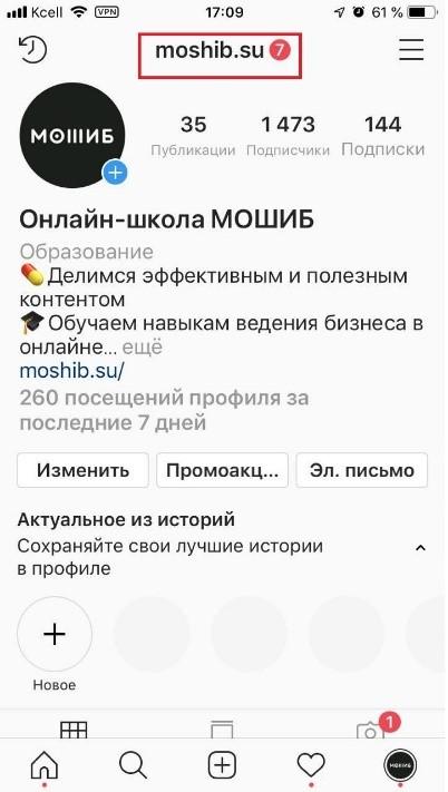 Скриншот профиля инстаграма 9